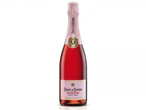 Juve Y Camp Rose Brut