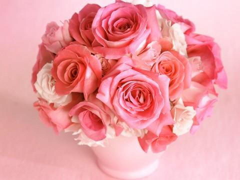 13 trandafiri albi si roz