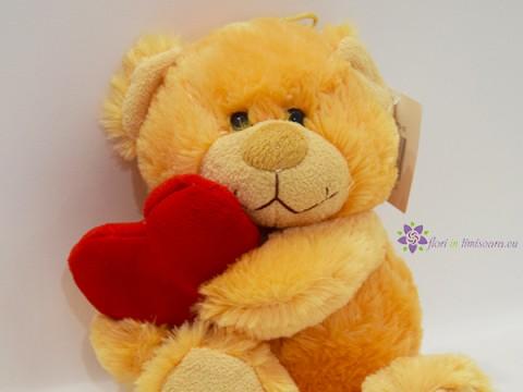 Ursulet cu inimioara rosie